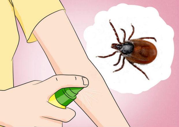 repellentnye-sredstva-zashhity-ot-kleshha