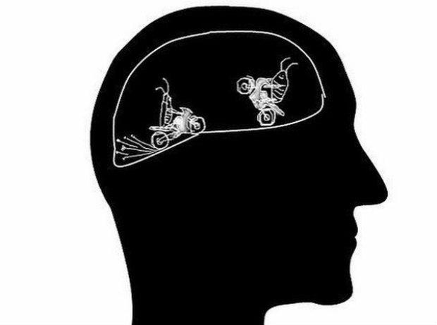 Тараканы в голове 123115