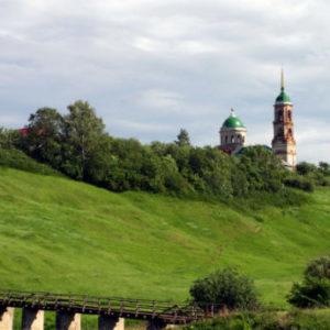 Рязанская область клещи