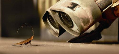 откуда тараканы берутся