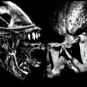 Тараканы против клопов