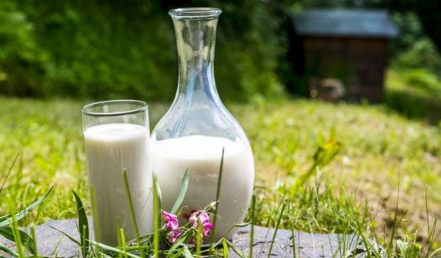 Молоко энцефалит кипячение